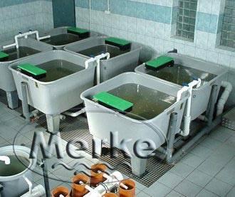 Бассейны для выращивания или подращивания живой рыбы с квадратным сечением