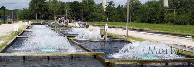 Работа аэраторов на водоеме для выращивания рыбы