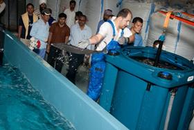 Бассейны для выращивания или подращивания живой рыбы
